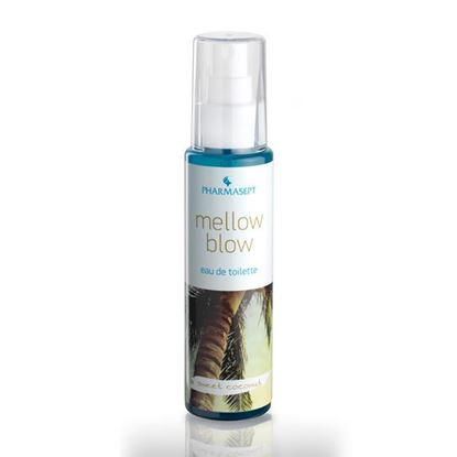 Picture of Mellow Blow - Sweet Coconut