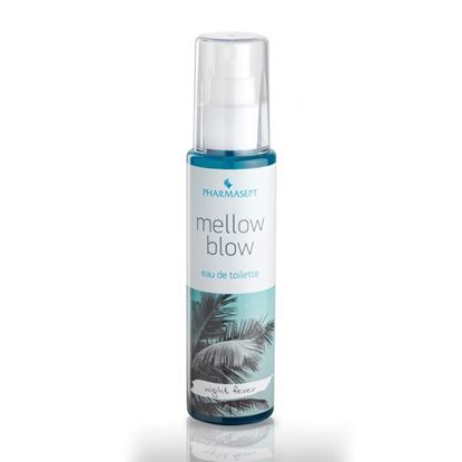 Picture of Mellow Blow - Night Fever