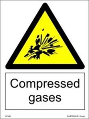 Picture of COMPRESSED GASES 20X15