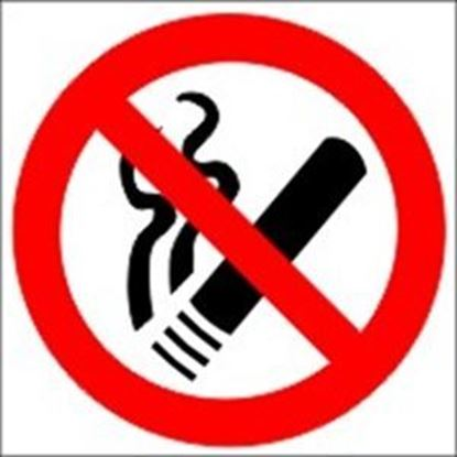 Picture of NO SMOKING 15X15