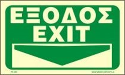 Picture of EXIT DOWN ARROW   25x25