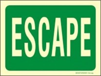 Picture of ESCAPE SIGN 20X15