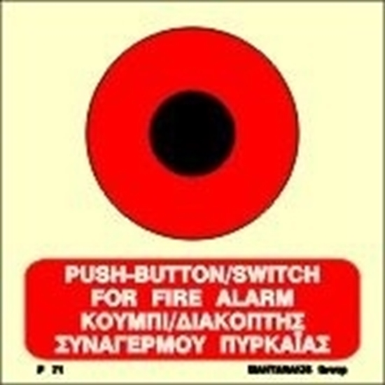Picture of PUSH-BUTTON/SWITCH FOR FIRE ALARM SIGN   15x15