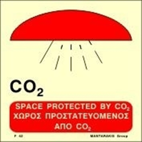 Снимка на SPACE PROTECTED BY CO2 SIGN   15x15